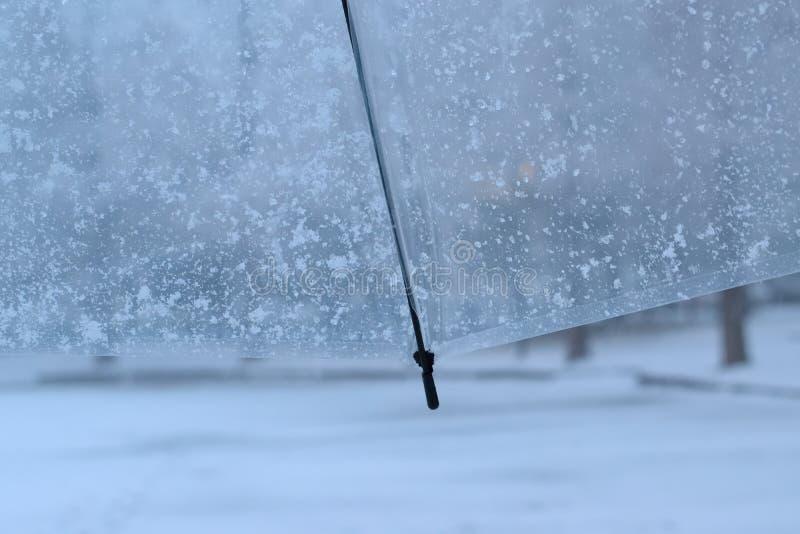 Bakgrundstextur av snö flagar över det klara vita plast- paraplyet royaltyfria bilder