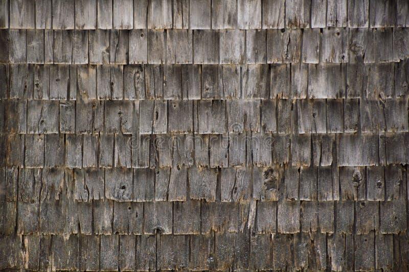 Bakgrundsväggen av busen ridit ut grått cederträ skakar singlar fotografering för bildbyråer