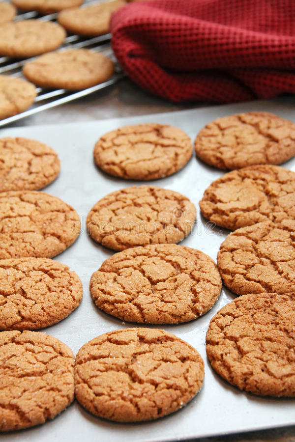 Baking Cookies. A cookie sheet and rack with freshly baked home made ginger cookies sit on a counter in the kitchen stock photos
