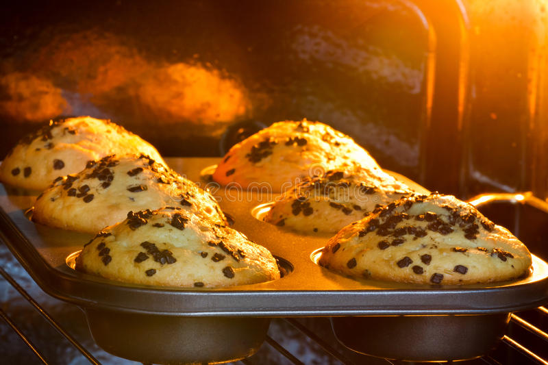 Baking tray with muffins stock images