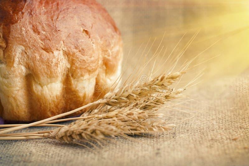 Bakkerijbrood en Schoof van Tarweoren Stilleven royalty-vrije stock afbeelding
