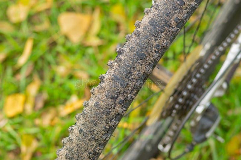 Bakre closeup för cykelhjul fotografering för bildbyråer
