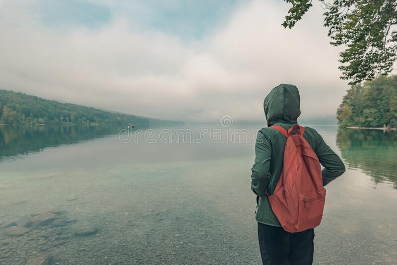 Bakre sikt över kvinnliga vandrare som njuter av sjö royaltyfri foto