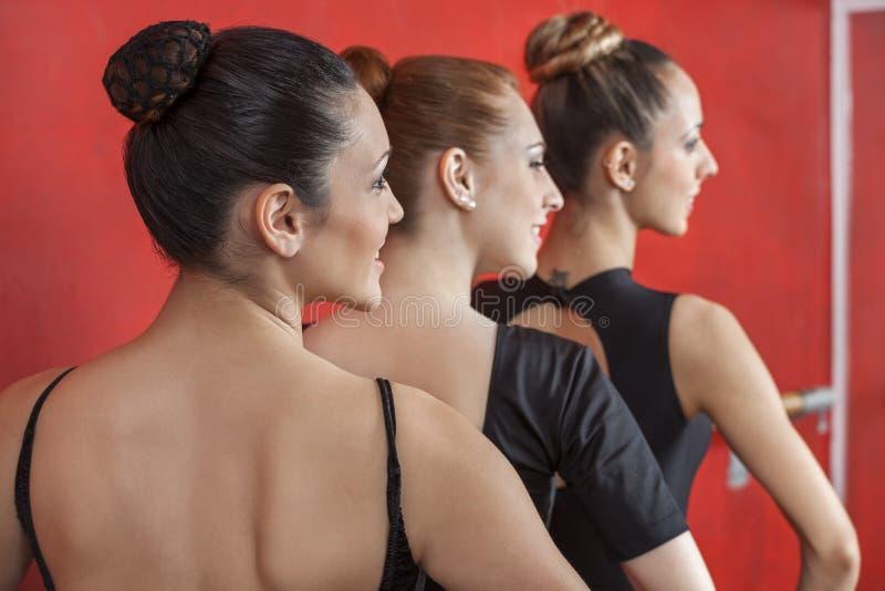 Bakre sikt av ballerina som utför i rad arkivfoto