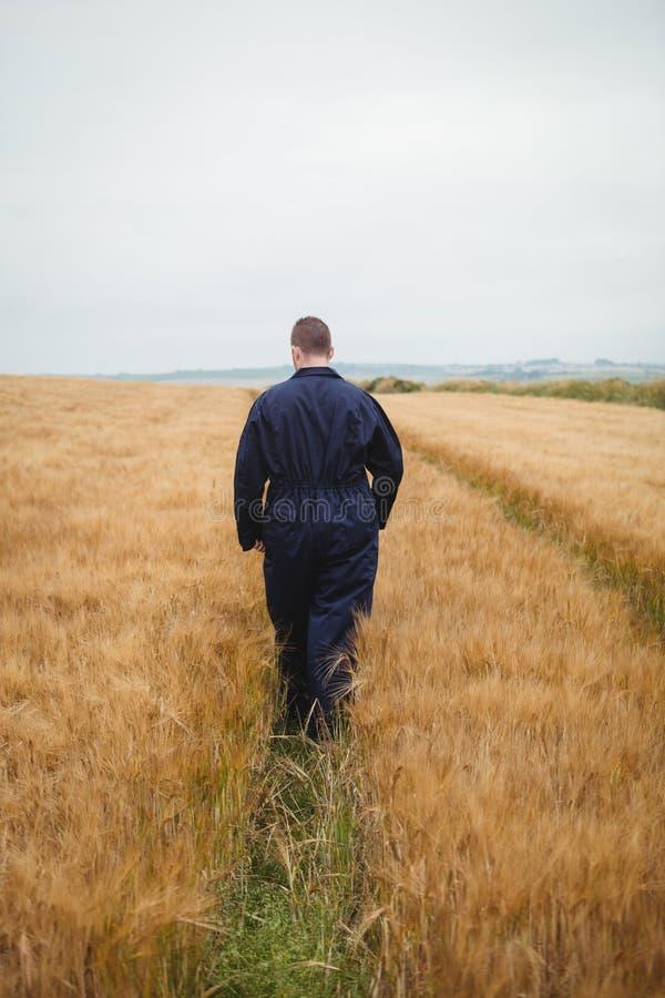 Bakre sikt av bonden som går i fältet royaltyfri foto