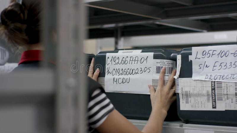 Bakre sikt av den kvinnliga arbetaren i fördelningslager Ung affärskvinna med skrivplattan på lagret royaltyfria bilder