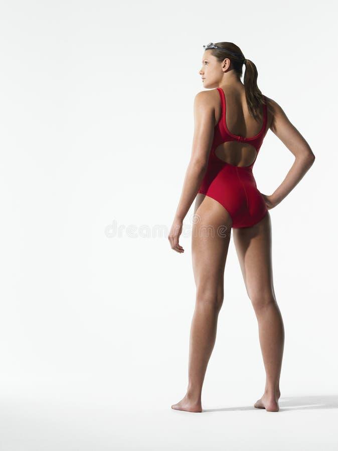 Bakre sikt av den kvinnliga simmaren In Red Swimwear royaltyfri fotografi
