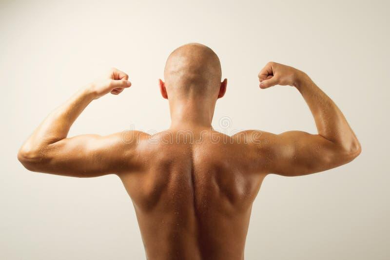 Bakre sikt av den muskulösa mannen som visar hans tillbaka muskler arkivfoto