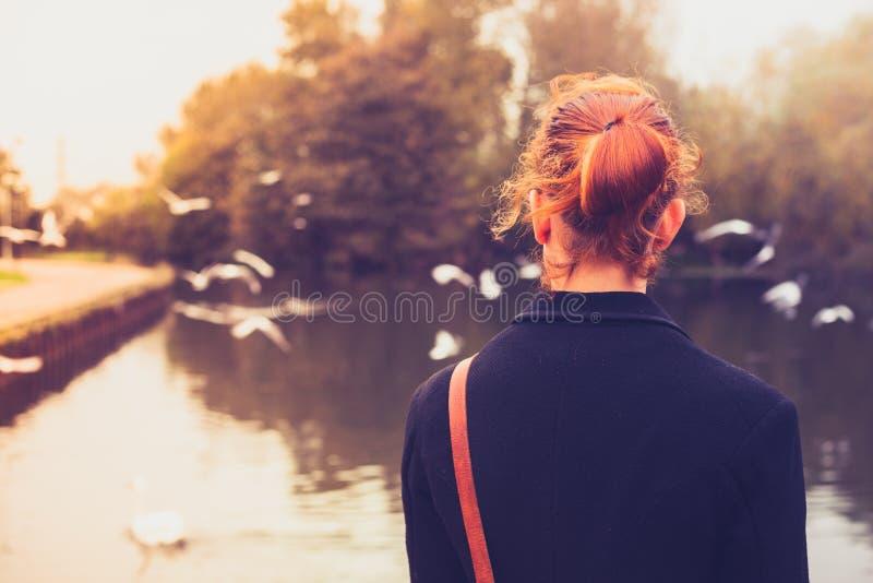 Bakre sikt av den unga kvinnan som ser fåglar vid en flod royaltyfri bild