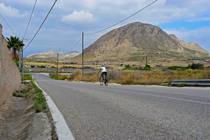 Bakre sikt av en cyklist i bergen med att bedöva landskap fotografering för bildbyråer
