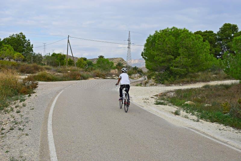 Bakre sikt av en cyklist i bygden royaltyfri bild