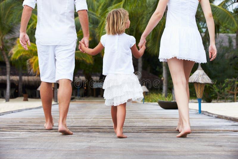 Bakre sikt av familjen som går på träbryggan arkivfoto