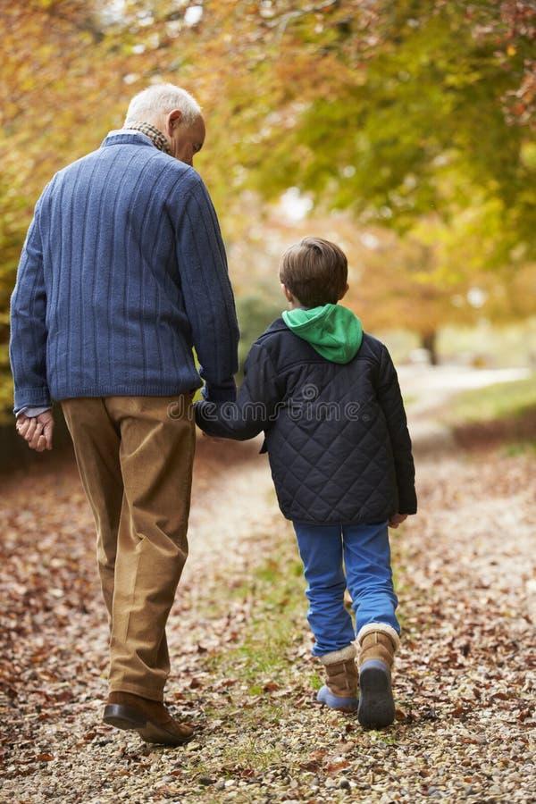 Bakre sikt av farfadern och sonsonen som promenerar banan royaltyfri foto