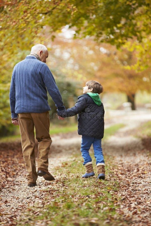 Bakre sikt av farfadern och sonsonen som promenerar banan fotografering för bildbyråer