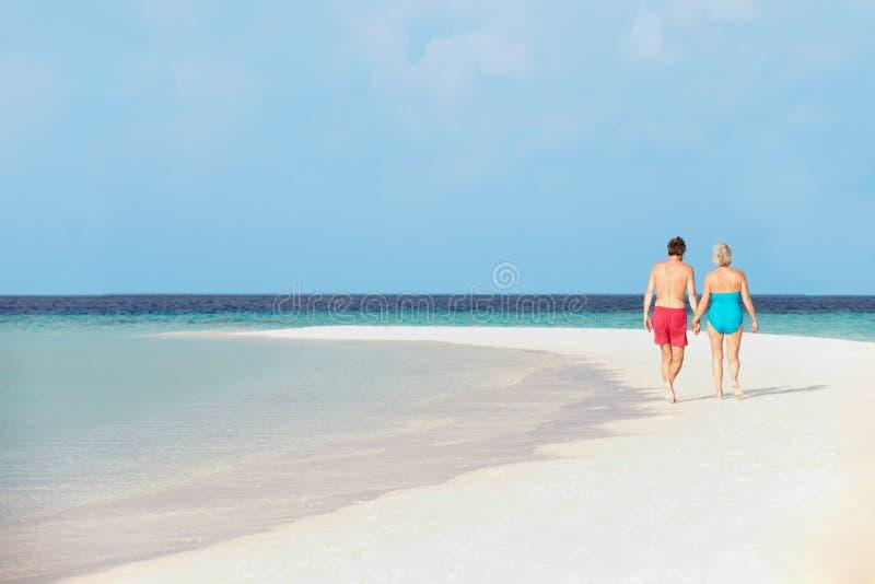 Bakre sikt av höga romantiska par som går i det tropiska havet royaltyfri fotografi