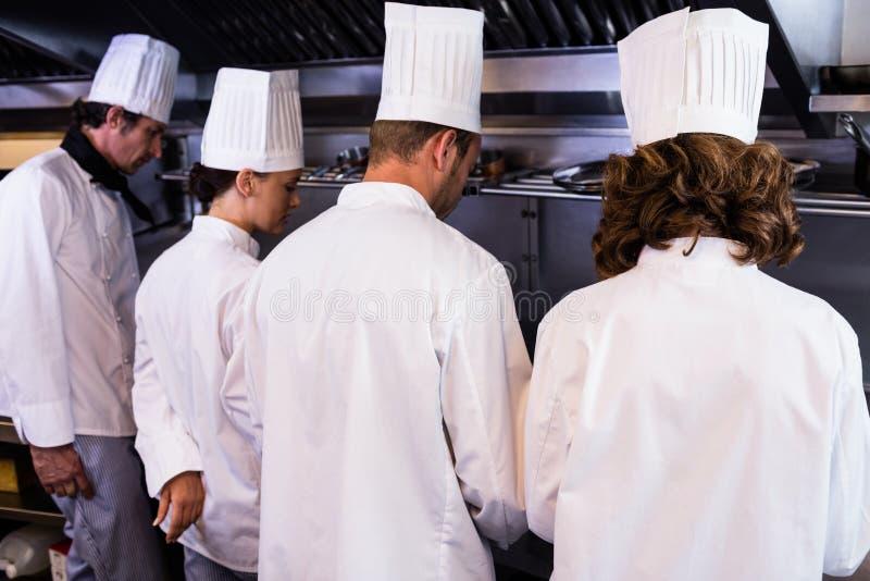 Bakre sikt av kockar som förbereder mat i kök royaltyfri bild