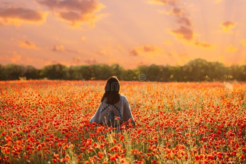 Bakre sikt av kvinnan som går i vallmoäng på solnedgången royaltyfri fotografi