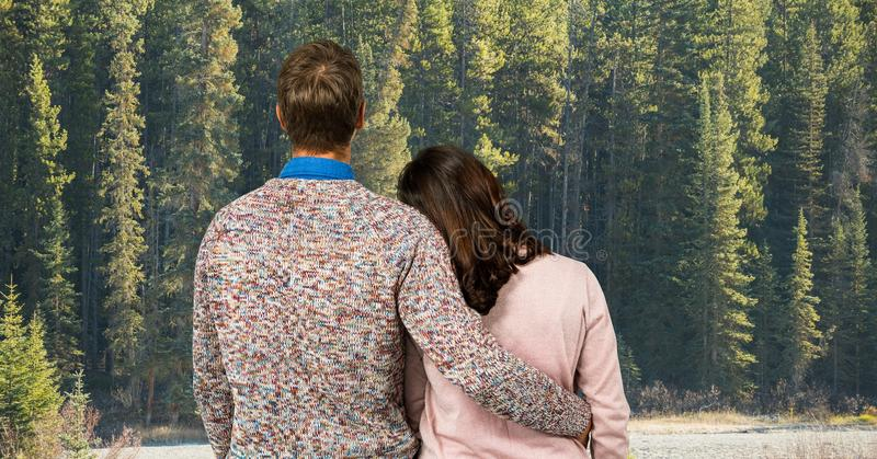 Bakre sikt av par som ser skogen arkivfoto