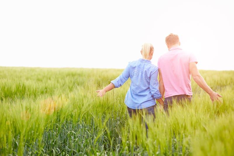 Bakre sikt av romantiska par som går i fältinnehavhänder arkivfoton