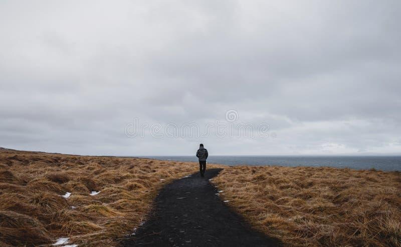 Bakre sikt en man som bara går på vandringsledet i torkat fält royaltyfri fotografi