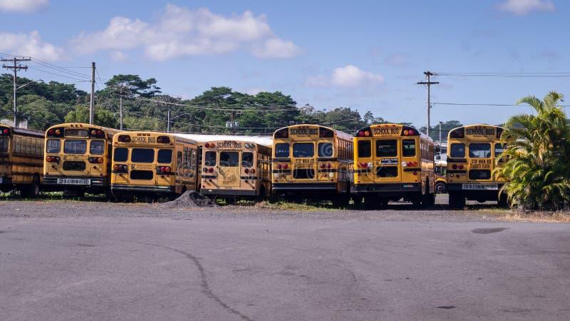 Bakre sikt för amerikansk skolbuss i rad royaltyfria bilder