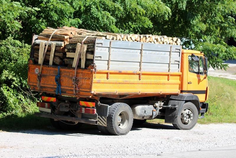 Baksida av gammal gul lastbil fylld med ved parkerat på gravparkeringsplats bredvid vägbeläggning omgiven av täta träd royaltyfria bilder