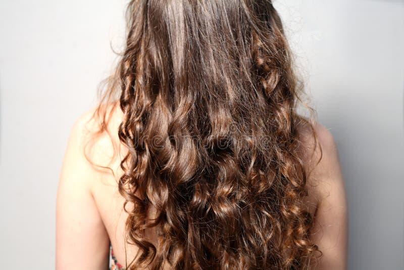 Baksida för sikt för tillbaka sida av ungt kvinnligt lockigt hår arkivbild