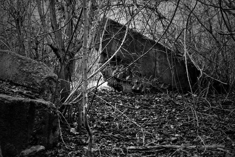 Baksteenruïnes en de winterbomen royalty-vrije stock afbeelding