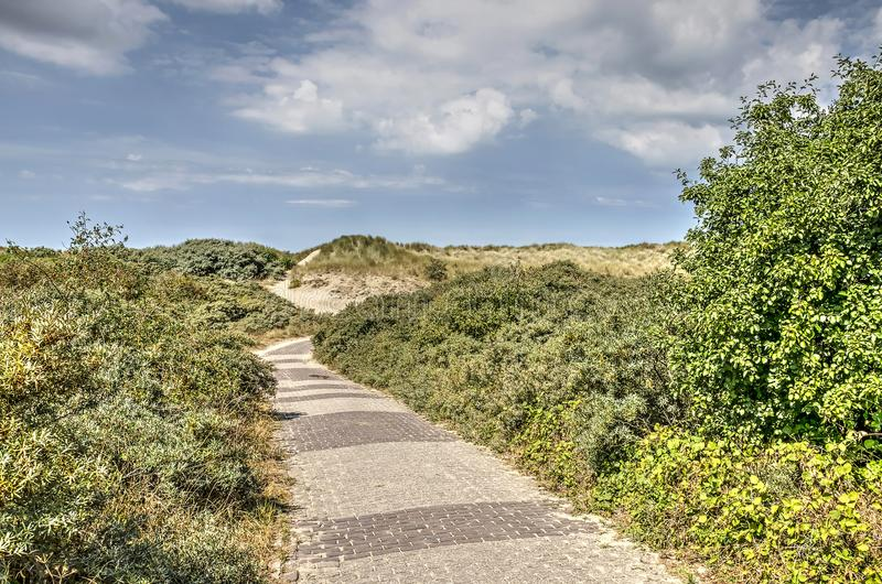 Baksteenweg in de duinen royalty-vrije stock afbeelding