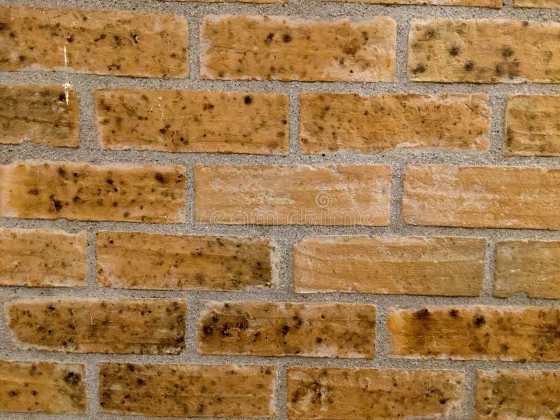 Bakstenen muur met vlekken Achtergrond royalty-vrije stock afbeeldingen
