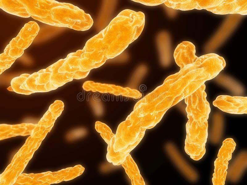 Download Bakterie ilustracji. Ilustracja złożonej z komórki, zakończenie - 13325054