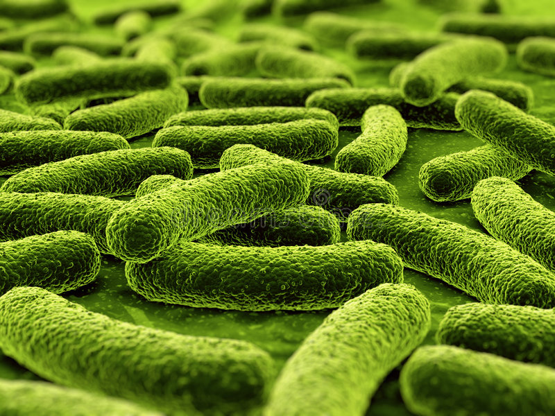 bakterie royalty ilustracja