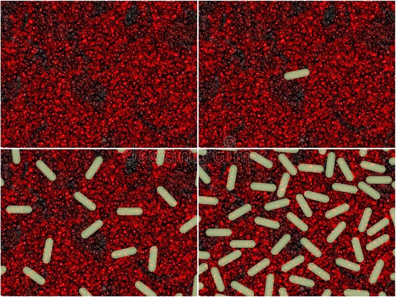 bakterie- etapper stock illustrationer