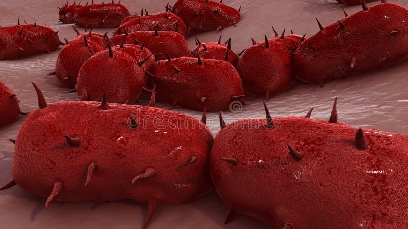 Bakterie- meningit royaltyfri fotografi