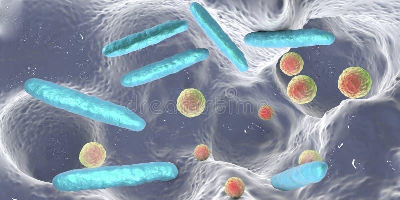 Bakterie wśrodku stomatologicznego zagłębienia ilustracji