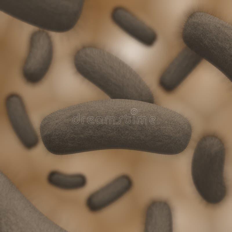 bakteriekoloni vektor illustrationer
