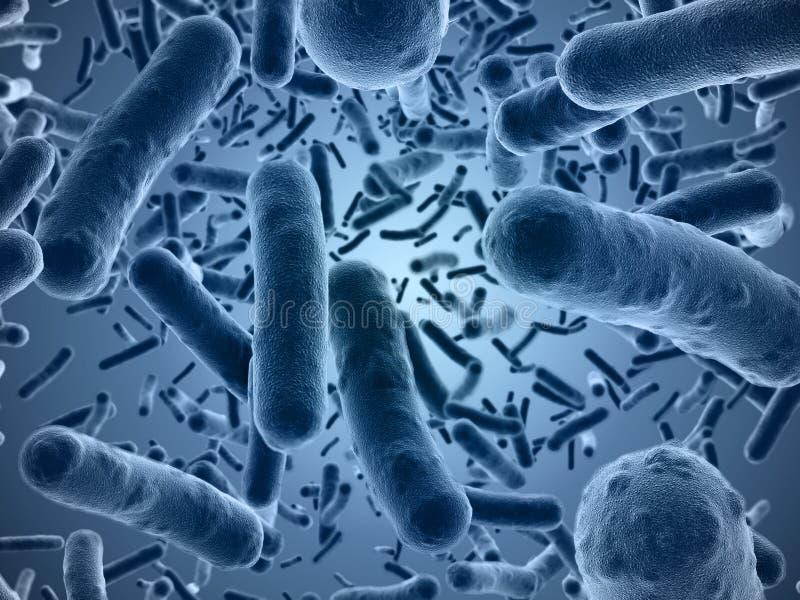 Bakterier som ses under ett scanningmikroskop stock illustrationer
