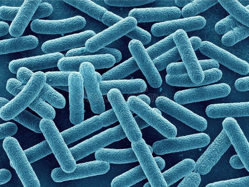 bakterier stänger sig upp stock illustrationer