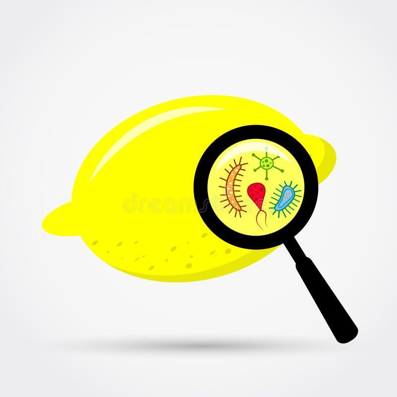 Bakterier under förstoring på citronen stock illustrationer