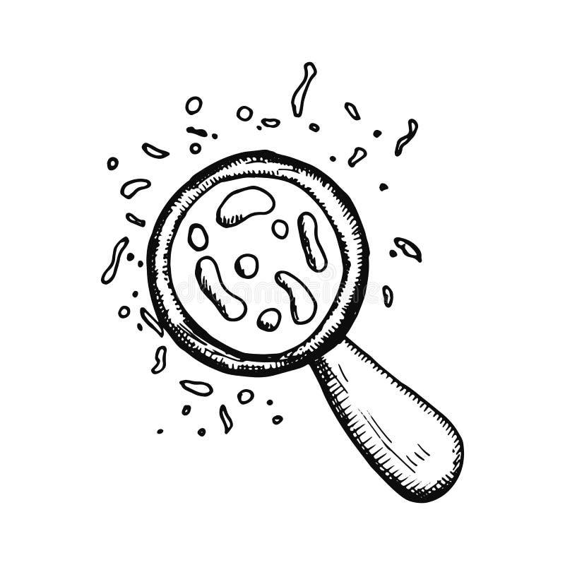Bakterier under förstoringsapparaten skissar isolerat på vit bakgrund royaltyfri illustrationer