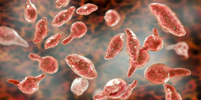 Bakterii Mycoplasma genitalium royalty ilustracja