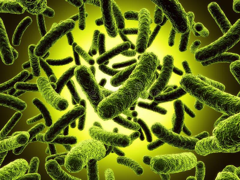 Bakterium stock abbildung