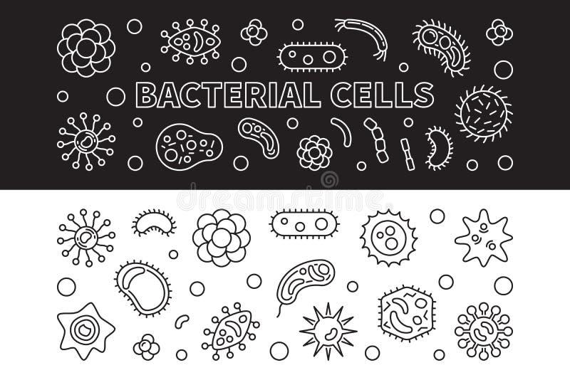 Bakteryjne komórki 2 sztandaru ustawiającego Wektorowa kontur ilustracja royalty ilustracja
