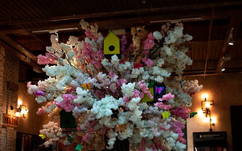 Baku, Azerbaijan - 13 de abril de 2019: Un árbol hermoso con las flores blancas y rosadas dentro de la biblioteca imagenes de archivo