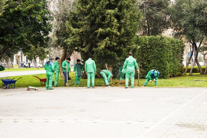 Baku Azerbajdzjan-April 16, 2018 trädgårdsmästare gräver rabatter i parkerar upp, arbetare som arbetar i, parkerar, folk på arbet royaltyfria bilder