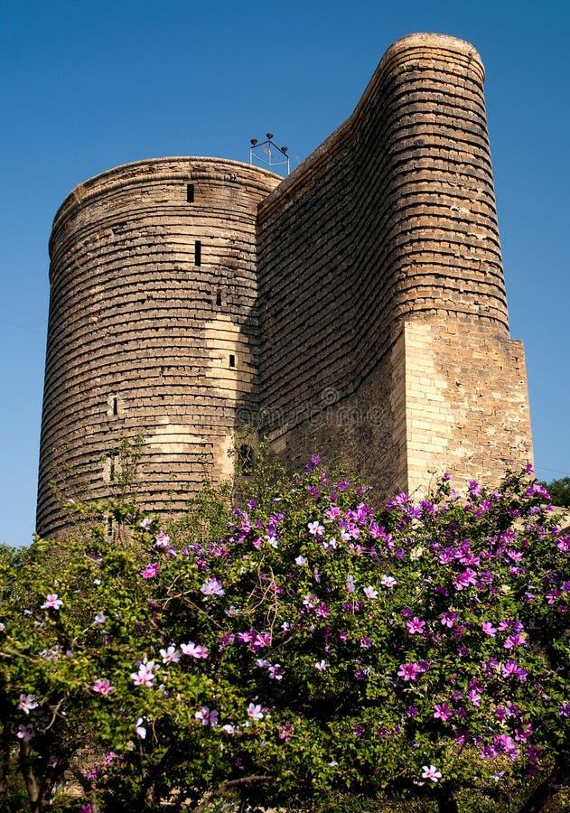 Baku central azerbaijan com torre das donzelas fotografia de stock royalty free