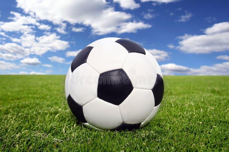 Balón de fútbol en hierba foto de archivo