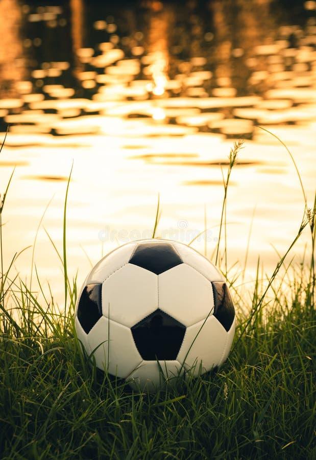 Balón de fútbol en hierba con la superficie del agua de la reflexión de la luz del sol imagenes de archivo