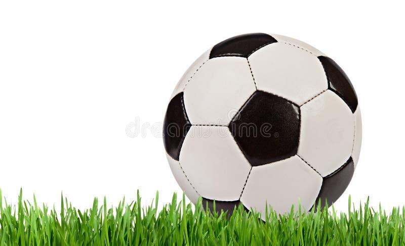 Balón de fútbol en la hierba aislada en el fondo blanco imagenes de archivo
