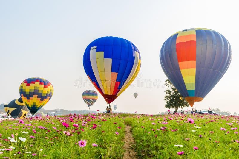 Balões de ar quente coloridos que voam sobre flores do cosmos imagens de stock royalty free
